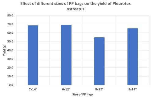 Effect of different PP bag sizes on the yield of Pleurotus ostreatus