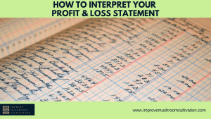 How to interpret your profit & loss statement
