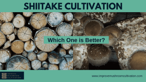 Shiitake Log or Bag cultivation: Which One is Better?