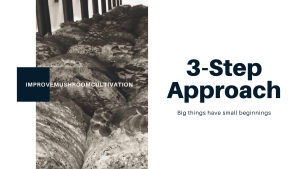 3-Step Approach