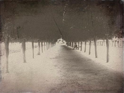 palais royale picture put through a photo aging generator