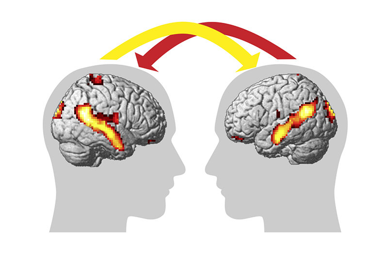 "This module teaches the scientific basis of psychology, social and affective neuroscience. The areas of scientific enquiry covered in this module include psychology, social cognition, empathy, self-other discrimination, plasticity of ""Theory of Mind"", and the brain's default network. Another important aspect of this module is the analysis of the causes underlying psychopathologies of social cognition, early child development and culture, and the investigation of memory processes that allow us to function in the future."