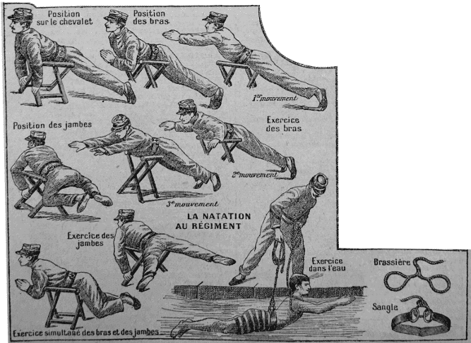 histoire de la natation - apprentissage de la brasse