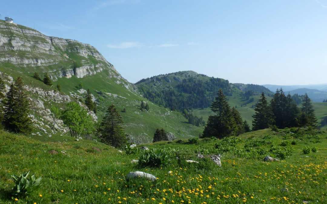 Le Tour de la Dôle, excursion sur les chemins suisses