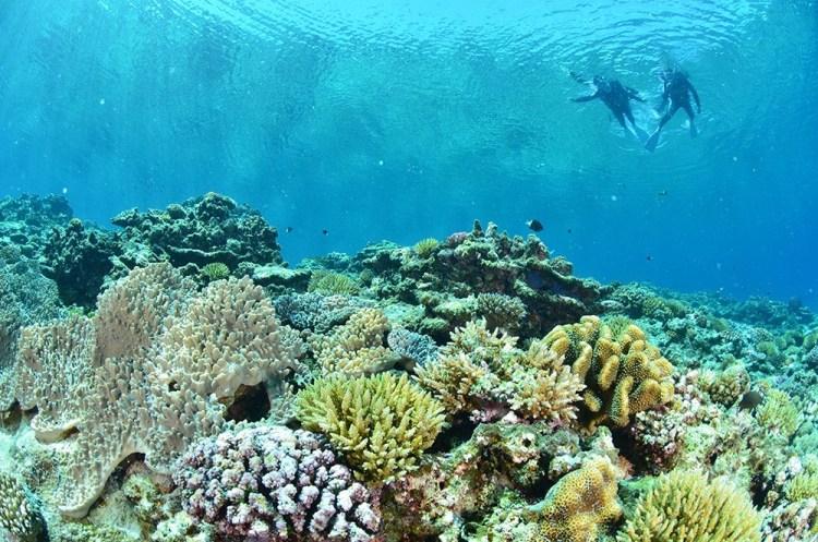 沖繩浮潛景點