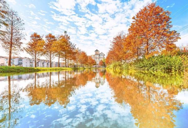 宜蘭一日遊景點推薦 宜蘭游家農場