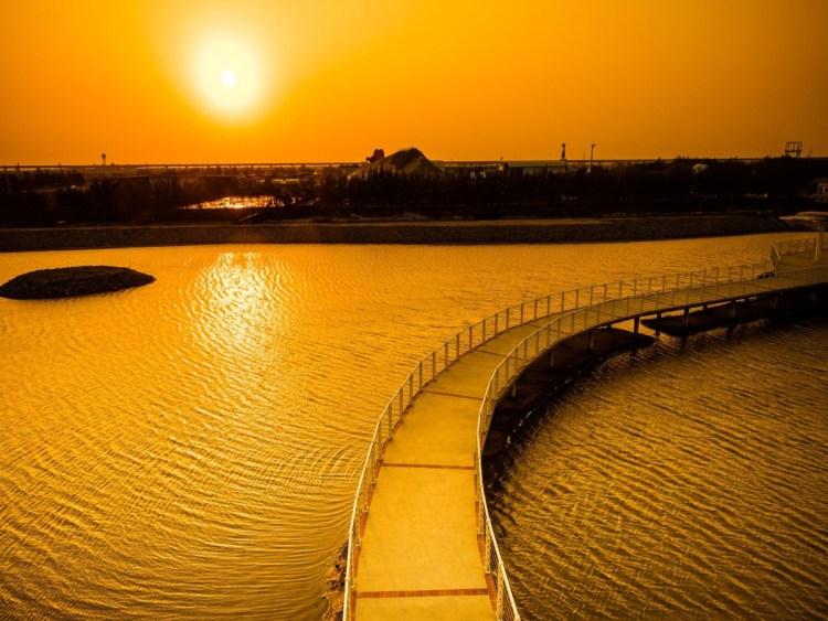 【台南】最新自然系打卡景點!西部最美夕陽在七股遊客中心