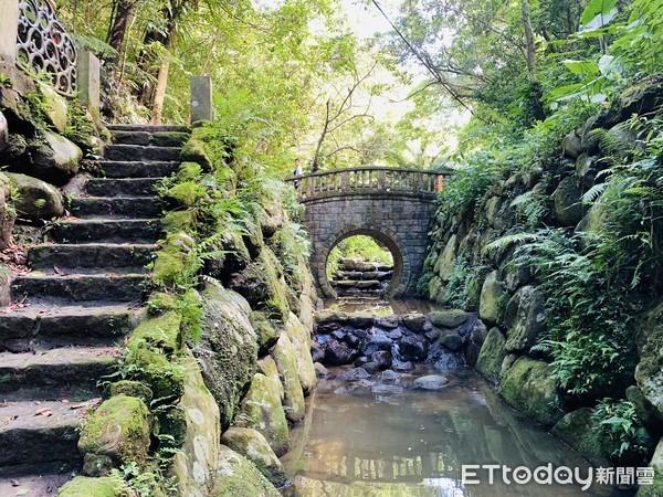 虎山生態步道|台北登山推薦,台北步道推薦,台北景點