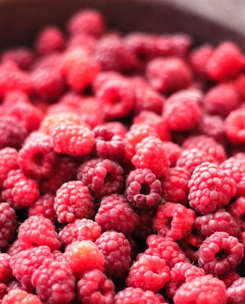 hindbærmarmelade, lowcarb, lchf marmelade, bær, hindbær, lchf dessert, sukkerfri marmelade, lowcarb dessert, sukkerfri dessert