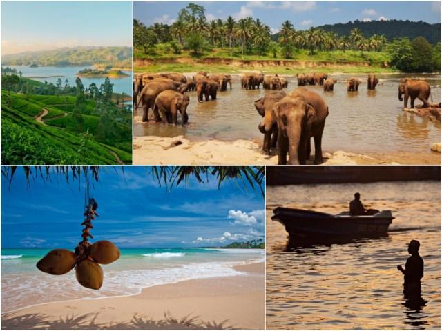 srilanka_3_Fotor_Collage