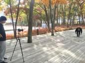 watermill-dance