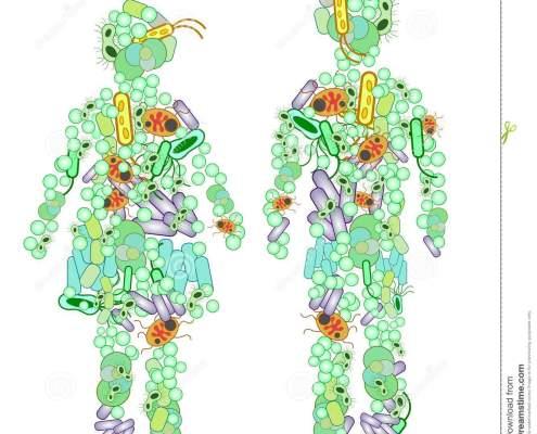 immunerosites-gyermekkorban