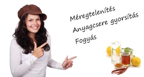 meregtelenites-fogyas-micro-alga
