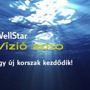 WellStar-2020