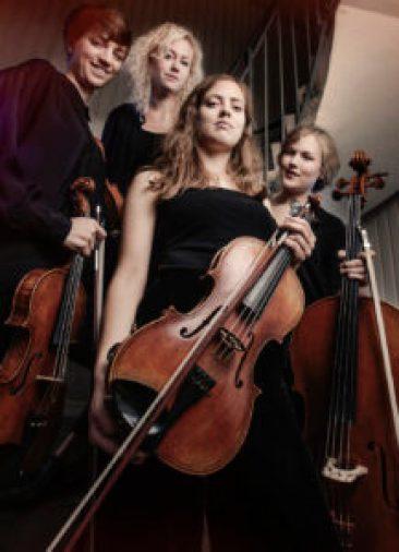 malvakvartetten