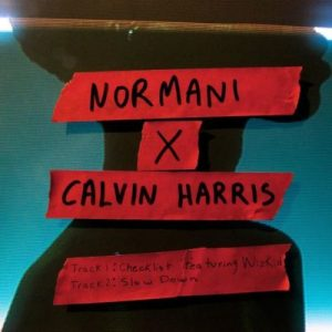 Normani X Calvin Harris Checklist ft. WizKid