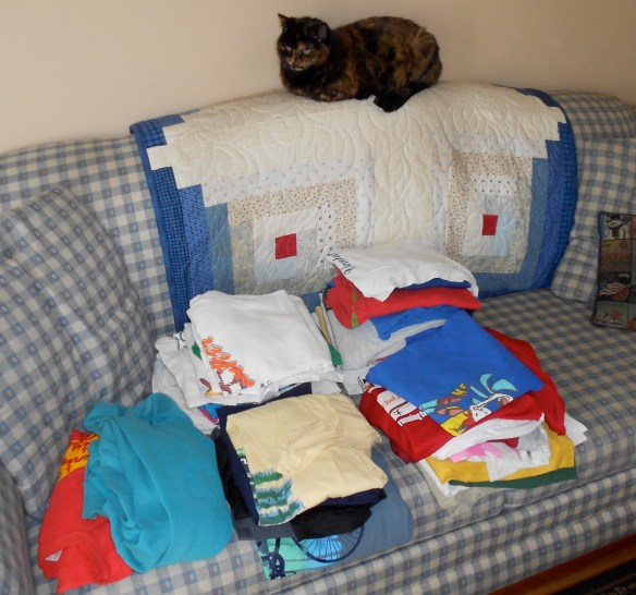 Whenever I bring out my valuable collection, I have my attack cat, Gloopy, on guard.
