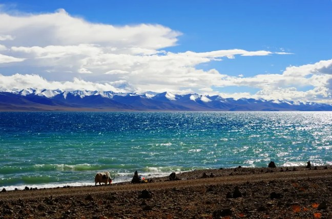 Tibet - The Roof of the World