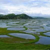 Floating National Park