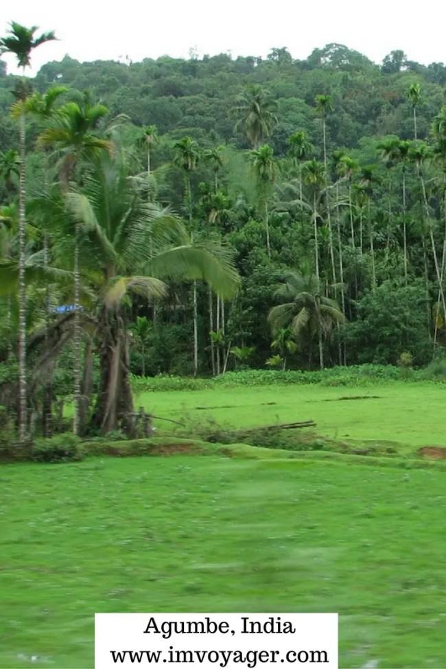 monsoon destinations