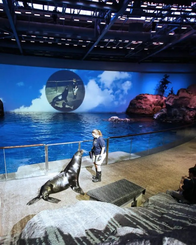 Best Attractions in Chicago