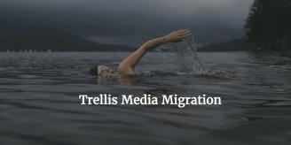 Trellis Media Migration