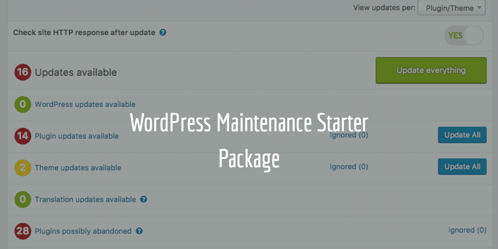 WordPress Maintenance Starter Package