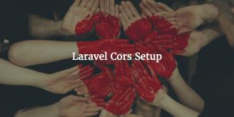 Laravel Cors Setup