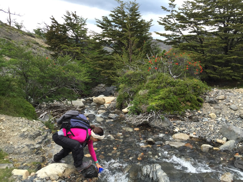 Day 2 -  W Trail Hike on Torres Del Paine - Getting more water!
