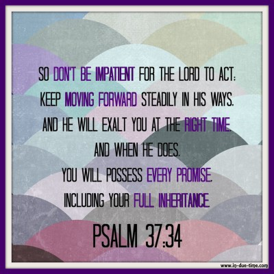 Psalm 37 - In Due Time Blog