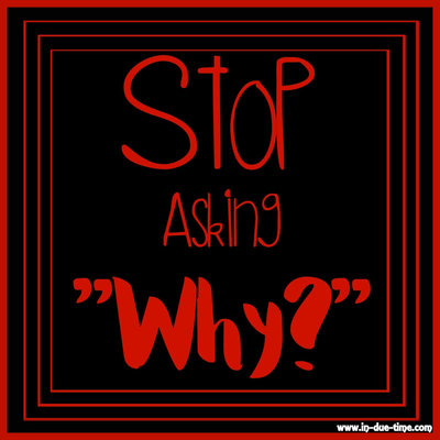 Stop Asking Why - In Due Time Blog