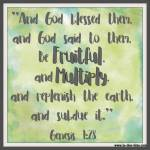 Genesis 1:28 – Fruitful + Multiply #124