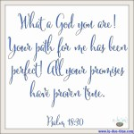 Psalm 18:30 God's Perfect Path #144