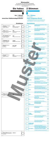 stimmzettel-mit-muster-aufdruck_000001