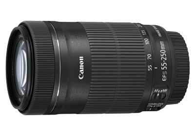 Canon EF-S55-250mm f/4-5.6 IS STM Lens
