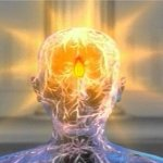 Phenomenon – How Consciousness And Reality Are Intertwined