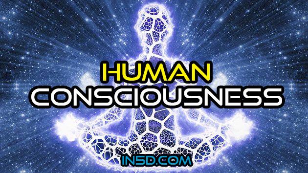 Base Evolutiva da Condição da Consciência Humana