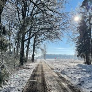 Laufen im Winter 2020/2021: Schnee im Februar