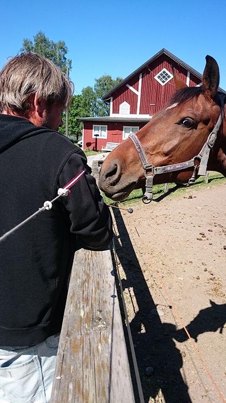 Ridning-fanta-o-häst