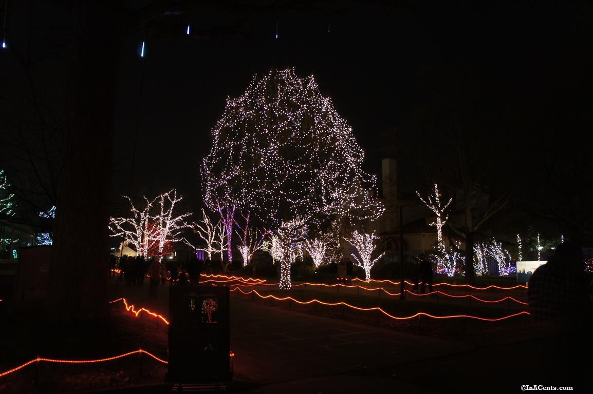 Cleveland Zoo Christmas Lights Decoratingspecial Com