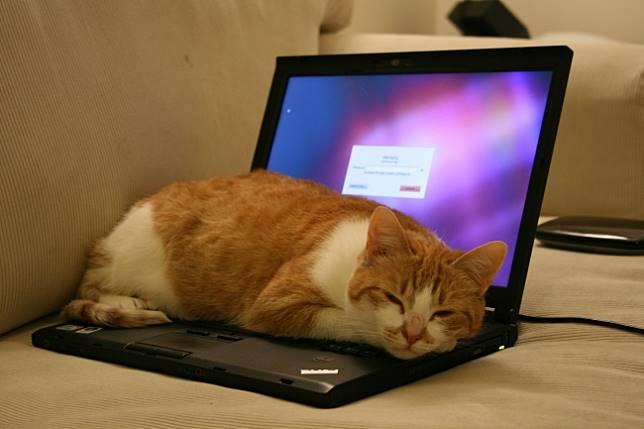 1 15 Tahu Gak? Tanpa disadari 7 Kebiasaan ini Ternyata Bisa Membunuh Laptop Kamu, Salah satunya pasti sering Kamu Lakukan