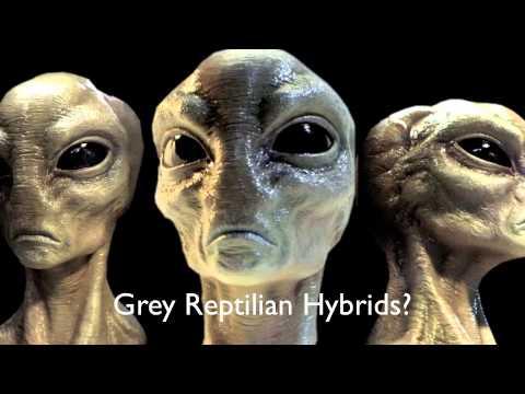 4 41 4 Jenis Alien ini Sudah ada di Bumi Sejak Lama. Pasti Kamu Gak Sadar