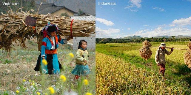 5 36 Ini Nih 10 Bukti Jika Kebiasaan dan Tempat di Vietnam Mirip Seperti di Indonesia. Mau Liat