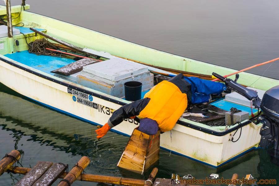 能登 穴水町 岩車 田舎暮らし ナマコ noto anamizu iwaguruma countryside lifestyle sea cucumber