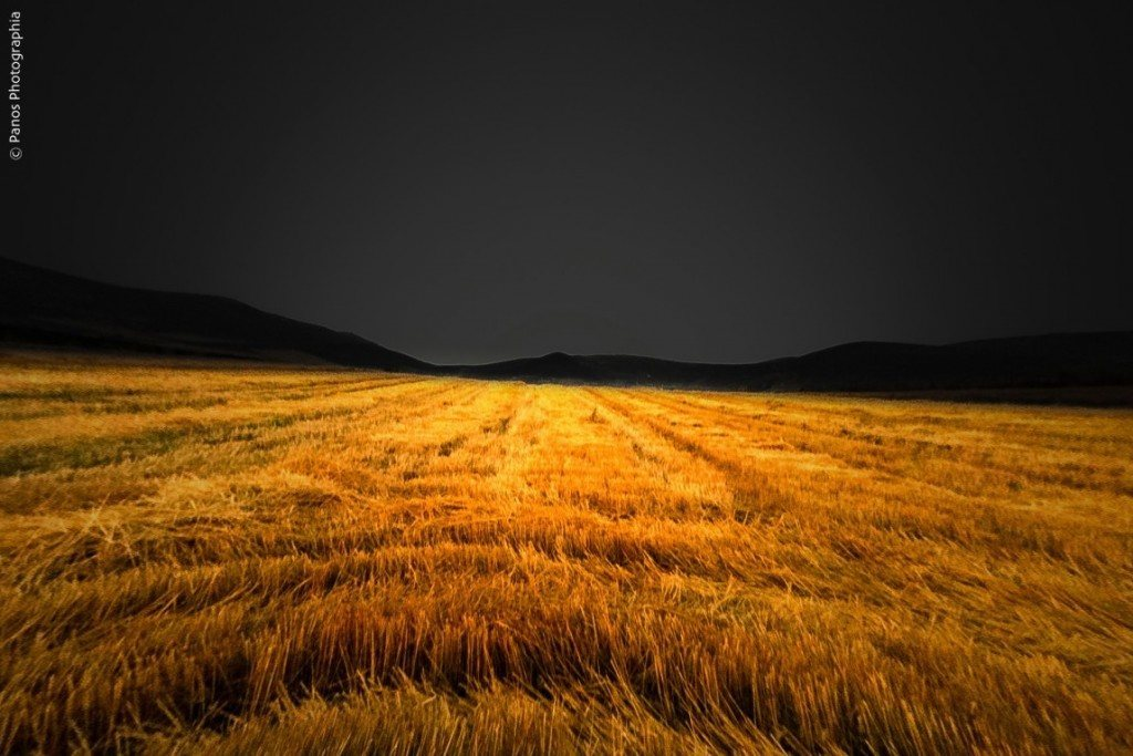 """Featured image for """"A Song of Harvest"""""""