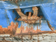 corrosion causing on ship