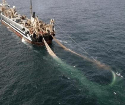 Kapal trawl sedang melakukan penangkapan ikan