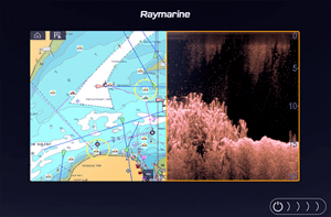 Display with DownVision™ Sonar