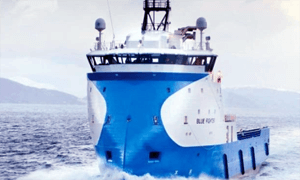 HERMITAGE OFFSHORE FILES BANKRUPTCY DUE TO PROLONGED MARKET SLUMP