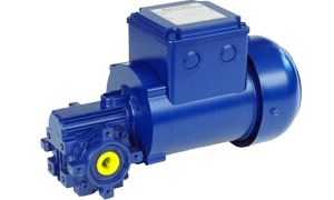 BS Series Small Industrial Worm Geared Motor